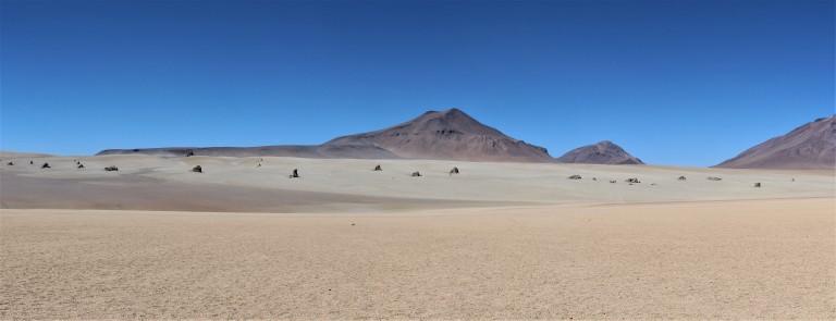 Panorama Dali Desert