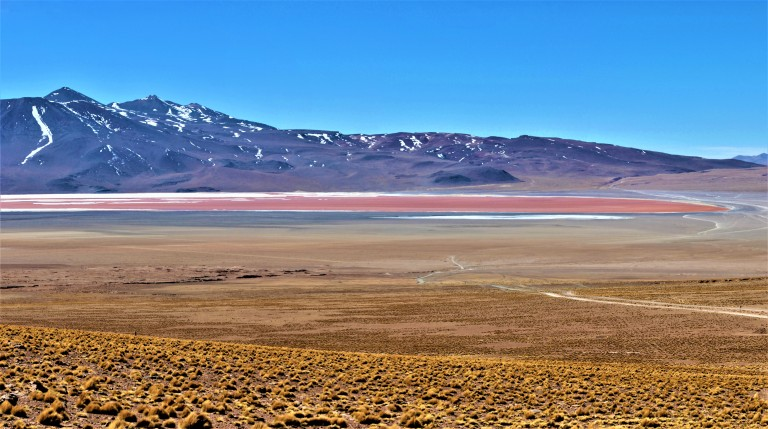 Panorama Laguna Colorada 2